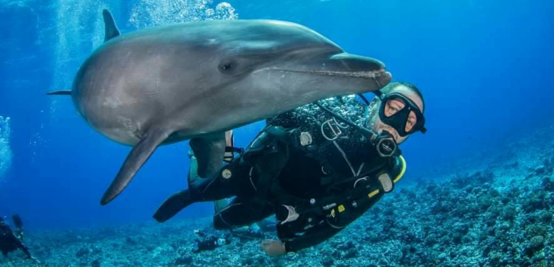 https://tahititourisme.ca/wp-content/uploads/2017/08/Archimedeexpeditionsphotocouverturure_1140x550px.png