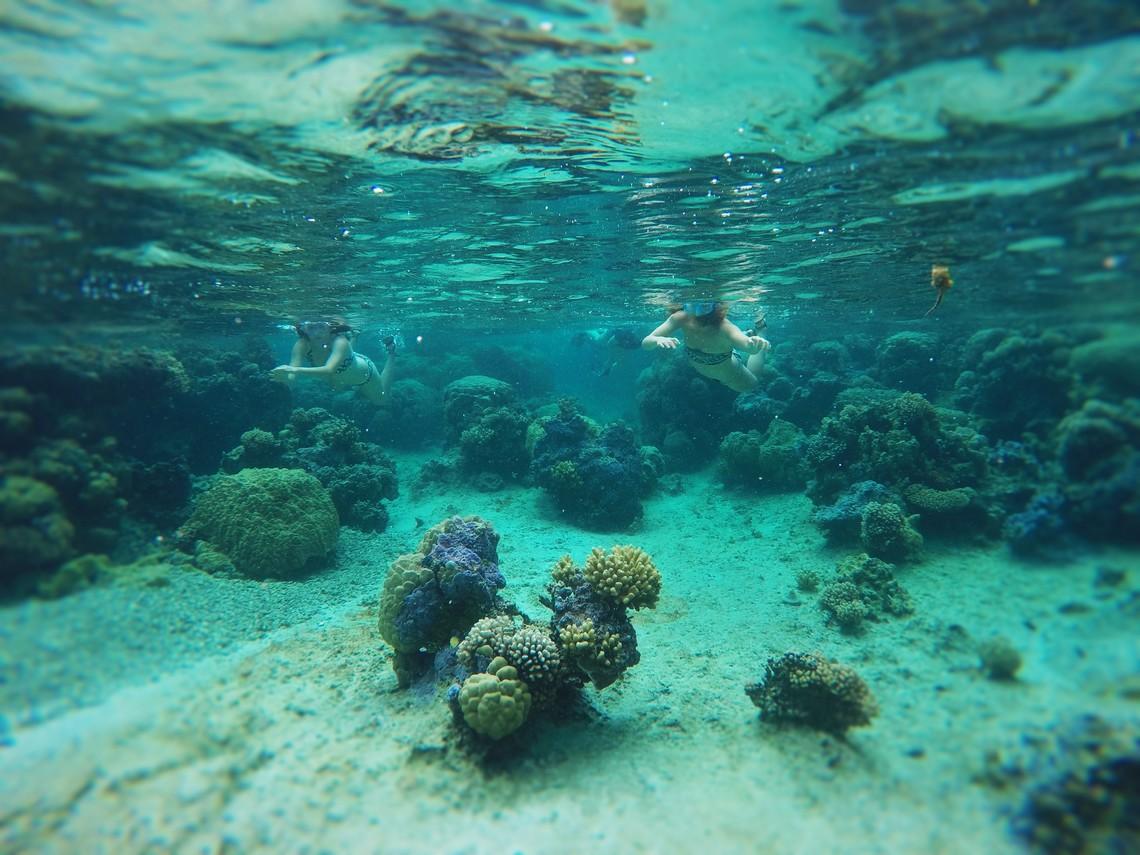 https://tahititourisme.ca/wp-content/uploads/2017/08/Bora-Bora-Reef-Discovery-2.jpg