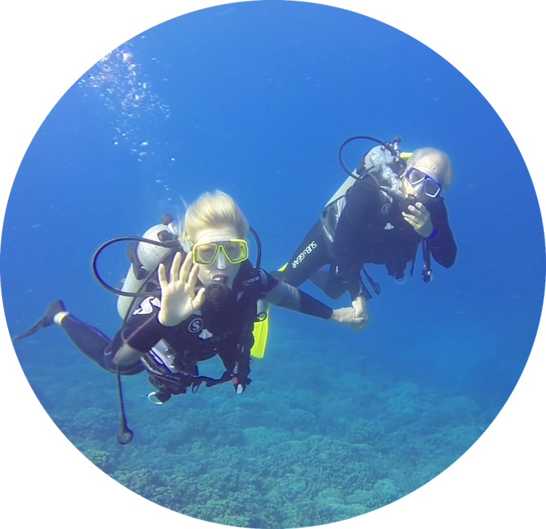 https://tahititourisme.ca/wp-content/uploads/2017/08/Divers-in-the-first-try.png