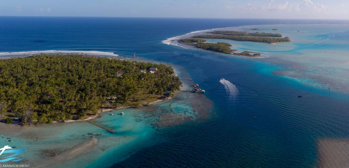 https://tahititourisme.ca/wp-content/uploads/2017/08/Tahiti-Dive-Management.png