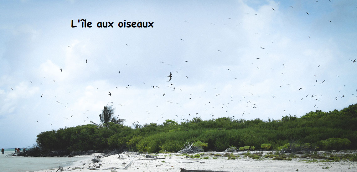 https://tahititourisme.ca/wp-content/uploads/2017/08/Tahiti-Voile-et-Lagon-photo-de-couv-2.jpg