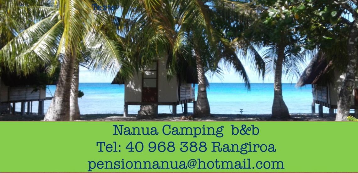 https://tahititourisme.ca/wp-content/uploads/2017/08/nanuacamping_1140x550.png