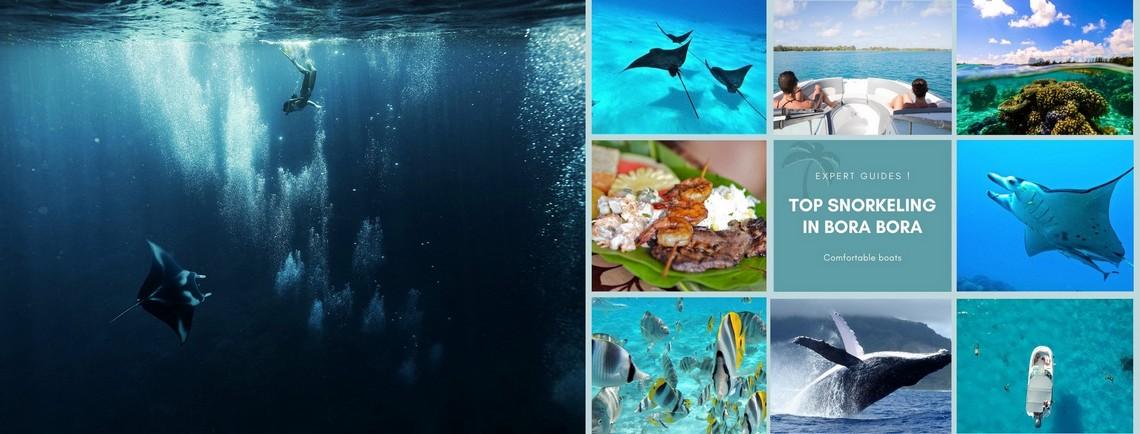 https://tahititourisme.ca/wp-content/uploads/2017/08/reef-discovery-bora-bora.jpg