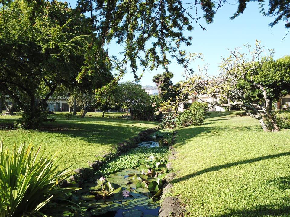 https://tahititourisme.ca/wp-content/uploads/2017/09/jardin-vue-1.jpg