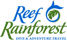 Reef Rainforest