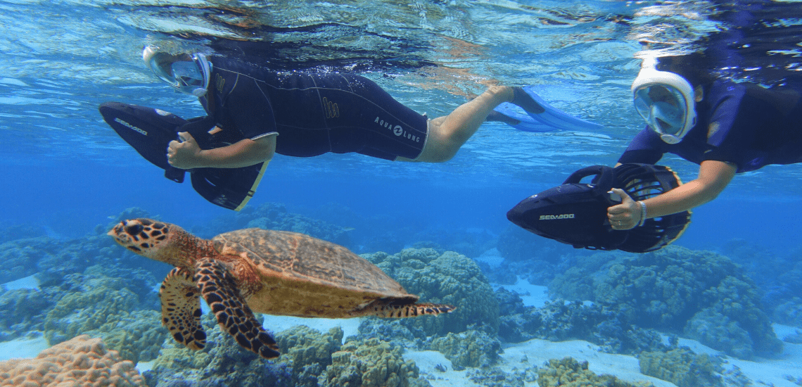 https://tahititourisme.ca/wp-content/uploads/2018/02/mooreawatergames_1140x5502-min.png