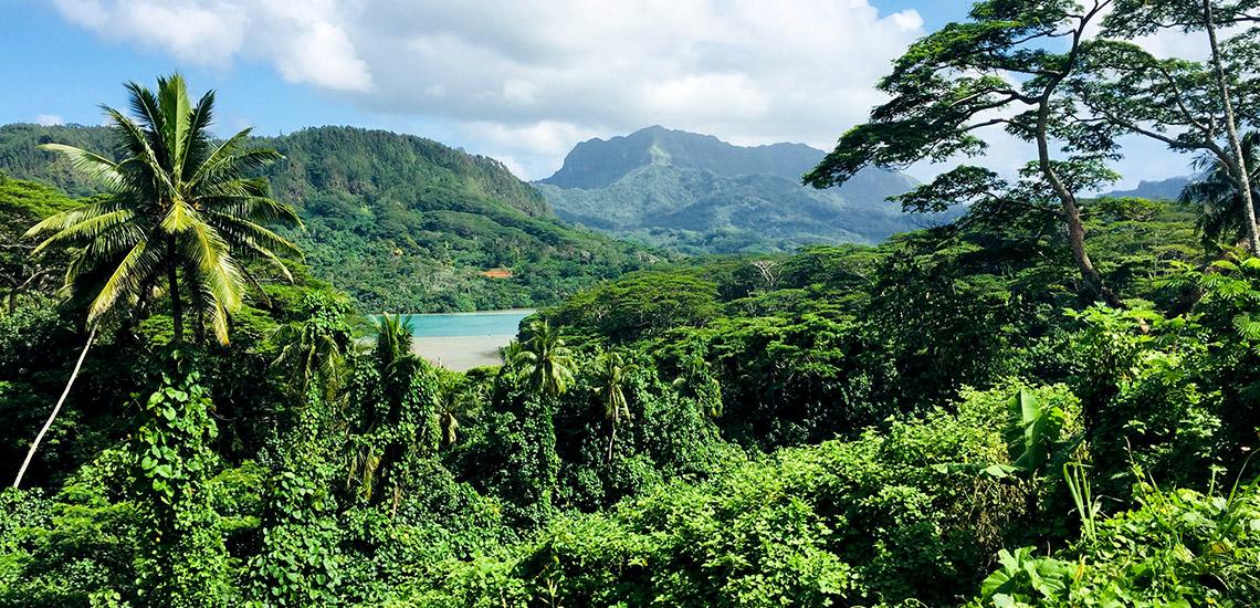 https://tahititourisme.ca/wp-content/uploads/2018/05/ACTIVITES-TERRESTRES-Green-Tours-Huahine-2.jpg
