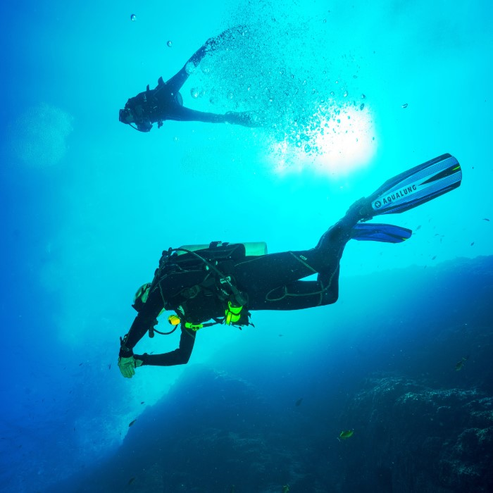 7 Days Diving the Tuamotu's by Far & Away
