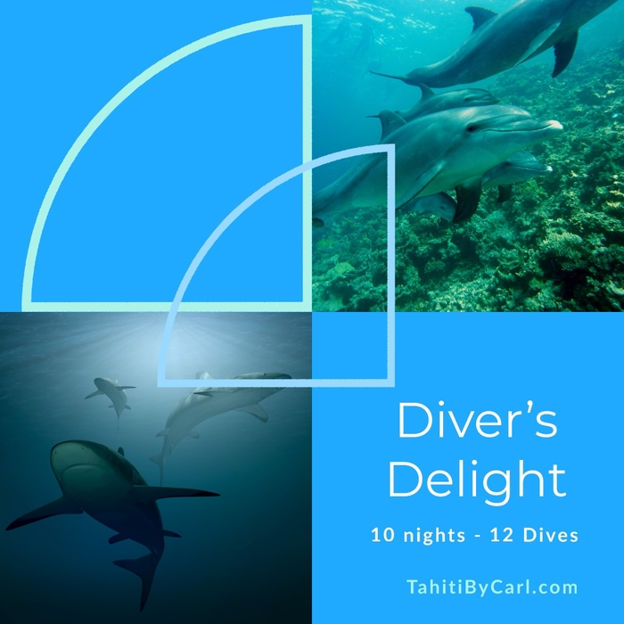 Diver's Delight – 10 night, 12 Dive Package