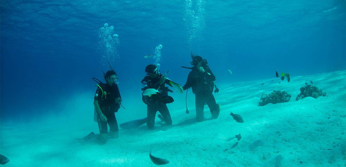https://tahititourisme.ca/wp-content/uploads/2019/04/Tahiti-Nui-Diving-1140x550.jpg