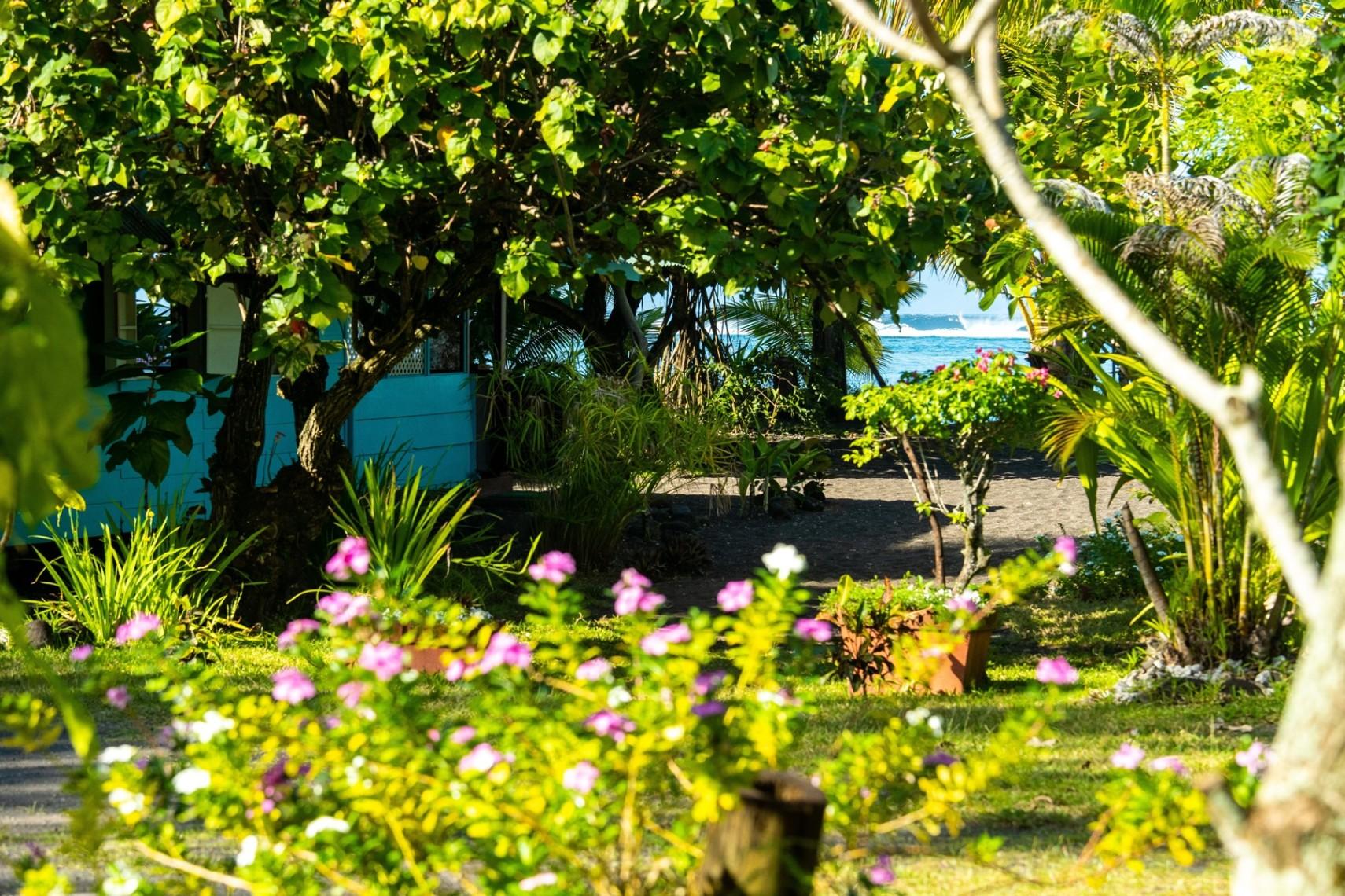 https://tahititourisme.ca/wp-content/uploads/2019/08/copie-tahiti-tourisme-800ko-1.jpg