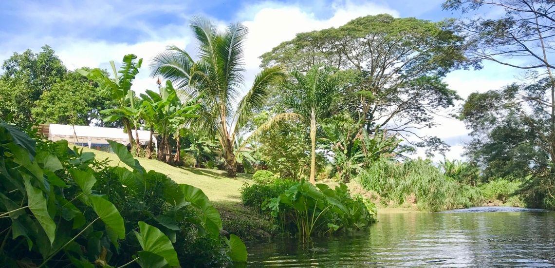 https://tahititourisme.ca/wp-content/uploads/2020/03/Teanavai_Camping_1140x5550px.jpg