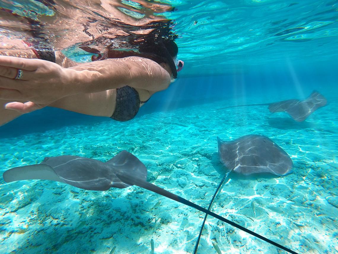 https://tahititourisme.ca/wp-content/uploads/2020/11/Lagoon-Srvice-Bora-Bora-2.jpg