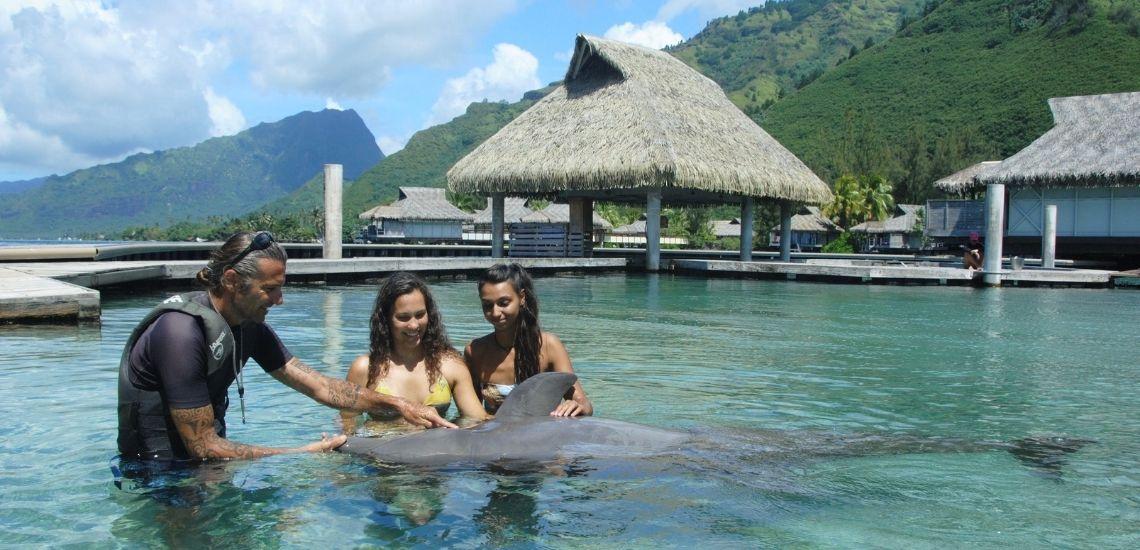 https://tahititourisme.ca/wp-content/uploads/2021/01/Offre_Moorea-Dolphin-Center.jpg