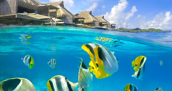 https://tahititourisme.ca/wp-content/uploads/2021/03/Tahiti-Moorea-Bora-Bora-avec-les-chaines-Conrad-2.jpg
