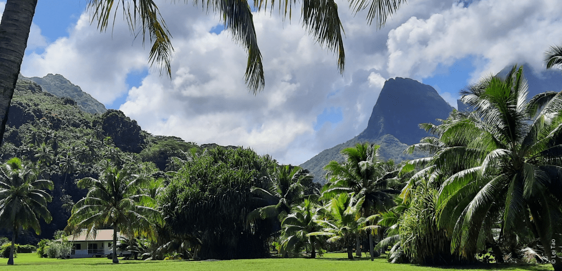 https://tahititourisme.ca/wp-content/uploads/2021/05/residenceapaura_1140x550-1-min.png